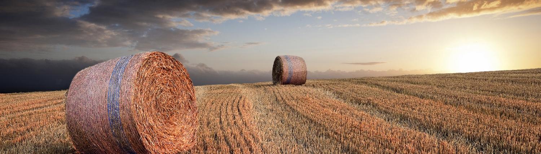 Agri Novatex UK | Sunset on Bluebell bales in the field