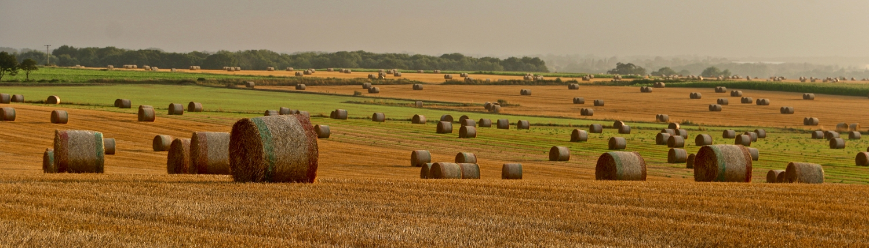 Agri Novatex UK | Winner bales on the field